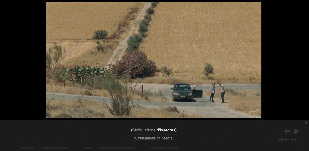 Longshot of open-doored car in the countryside, with a man pointing the way to a woman on the road, captioned Stridulations d'insectes/Stridulations of insects